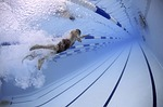 schwimmen photo
